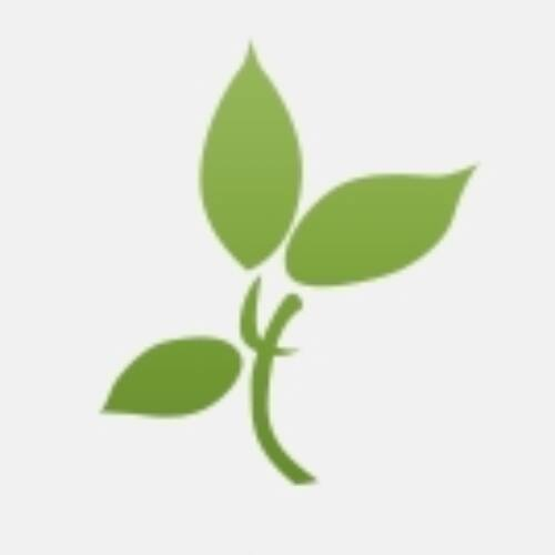 Bio datolya szirup 1150 gr. -Biorganik-